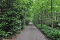 Verkaveling De Lintbeek te Oud-Turnhout