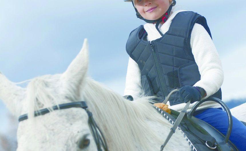 3% van Belgische gezinnen heeft paarden