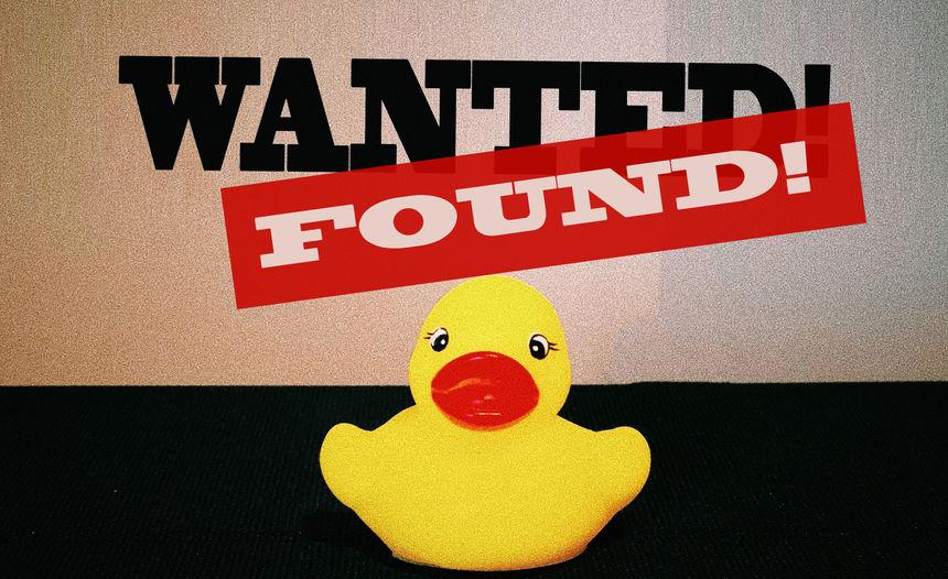 What The Duck ? *UPDATE = GEVONDEN*